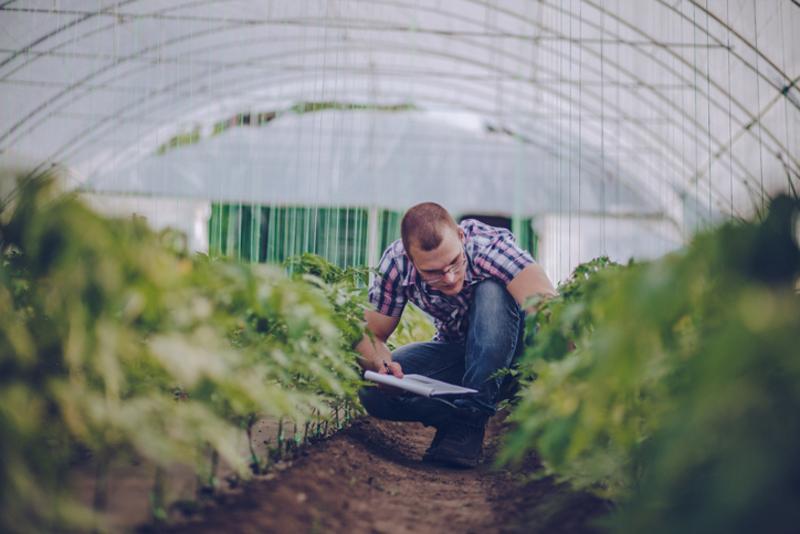 área da engenharia agronômica