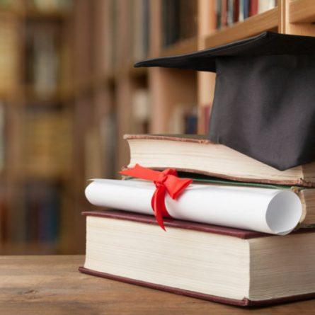 bacharelado ou licenciatura